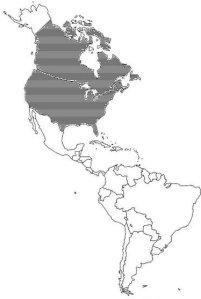americas-outl-banal